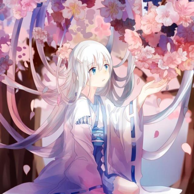 樱花樱花想见你